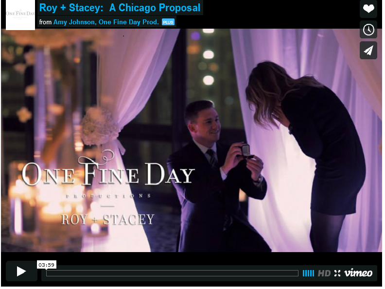 Proposal Videographers: Hire One