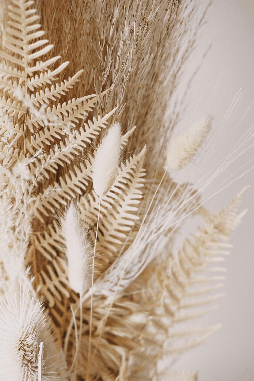 Boho Bridal Inspiration | Pins We Love